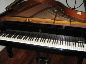 pianoles muziekschool Haagse Beemden